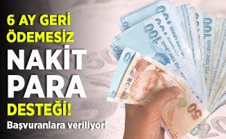 Nakit ihtiyacı olanlar dikkat! Ziraat Bankası'ndan dev destek! Başvuranlara 6 ay geri ödemesiz 10 bin TL kredi!
