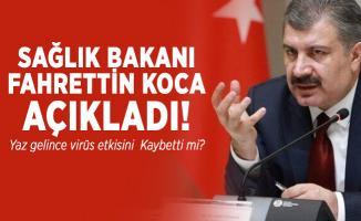 Sağlık Bakanı Fahrettin Koca açıkladı! Yaz gelince virüs etkisini kaybetti mi?