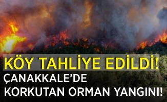 Son dakika Çanakkale'de korkutan orman yangını! Köy tahliye ediliyor!