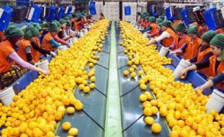 TASCO Gıda İŞKUR aracılığı ile 20 işçi alımı yapacağını duyurdu!
