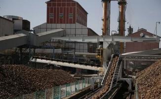 Türkiye Şeker Fabrikaları kadrolu 306 işçi alımı başvuruları yarın sona eriyor!