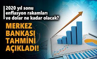 2020 yıl sonu enflasyon rakamları ve dolar ne kadar olacak? Merkez Bankası tahmini açıkladı!
