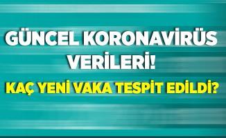 6 Ağustos koronavirüs verileri! Türkiye'de son durum nasıl? Kaç yeni vaka tespit edildi?