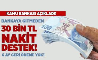 Bankaya gitmeden 30 Bin TL nakit destek alabilirsiniz! 6 ay geri ödeme yok! Online başvuru ekranı