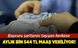 Bu şartları taşıyan herkese bin 544 TL maaş verilecek! Başvuru şartları neler?