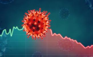 Koronavirüs (Covid-19) hakkında güncel bilgiler! Ciddi belirtileri nelerdir?