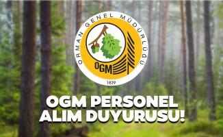 Orman Genel Müdürlüğü (OGM) 700 işçi alımı İŞKUR başvuruları bugün başladı! Başvuru şartları nelerdir?