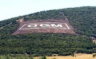 Orman Genel Müdürlüğü (OGM) işçi alımları İŞKUR üzerinden devam ediyor!