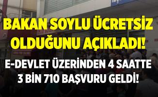 Bakan Soylu ücretsiz olacağını söyledi! E-Devlet'ten sadece 4 saatte 3 binden fazla kişi başvurdu!