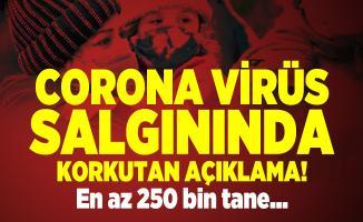 Corona virüs salgınında korkutan açıklama! En az 250 bin tane...