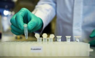 Türkiye'de yapılan Covid-19 aşısı ilgili açıklama geldi: Ciddi yan etkisi yok!