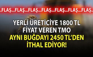 Yerli üreticiye 1800 TL fiyat veren TMO aynı buğdayı 2450 TL'den ithal ediyor!