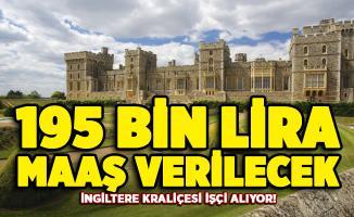 İngiltere Kraliçesi ilan yayımladı! 195 bin lira maaş verilecek