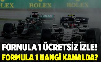 Formula 1 İstanbul nasıl ücretsiz izlenir? Formula 1 hangi kanalda? S Sports frekans bilgileri..