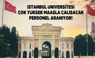 İstanbul Üniversitesi Çok yüksek maaşla çalışacak personel aranıyor!