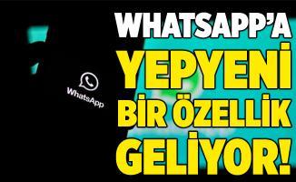 WhatsApp kullanıcıları dikkat! Yepyeni bir özellik geliyor!