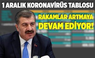 1 Aralık koronavirüs tablosu açıklandı! Türkiye koronavirüs vaka ve vefat sayısındaki rakamlar korkuttu!