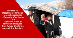 545 Sığınmacı Daha İyi Bir Yaşam Umuduyla Gün Sayıyor