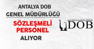 Antalya DOB Genel Müdürlüğü Sözleşmeli Personel Alımı Yapıyor
