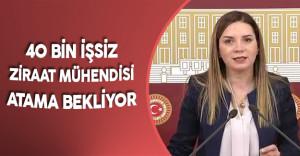 """Arzu Erdem: """" Milli Tarım Projesi için Ziraat Mühendisi Alımı Şarttır"""""""