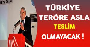 CHP Genel Başkan Yardımcısı: Türkiye Teröre Asla Teslim Olmaz