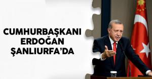 Cumhurbaşkanı Recep Tayyip Erdoğan Şanlıurfa'da