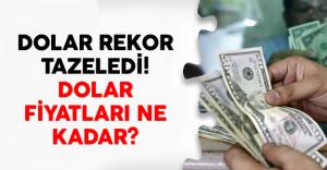 Dolar Rekor Tazeledi! Dolar Fiyatları Ne Kadar?