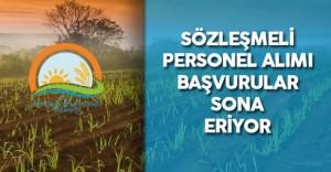 Gıda, Tarım ve Hayvancılık Bakanlığı Sözleşmeli Ziraat Mühendisi Alımı Başvurular Sona Eriyor