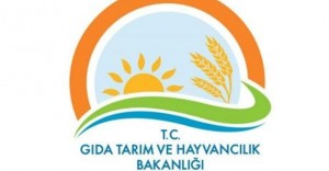 Tarım Bakanlığı Dönem Tayinlerinde Yabancı Dil Şartı Kaldırıldı