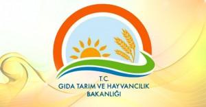 Tarım Bakanlığı Kurum İçi Atama Başvuruları Başladı