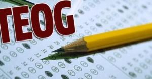 TEOG Fen ve Teknoloji Sınavı Soruları, Cevapları ve Yorumları ( Mazeret Sınavları )