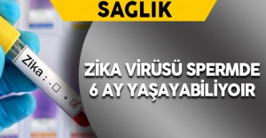 Zika Virüsü Spermde 6 Ay Yaşayabiliyor