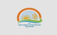 Gıda Tarım ve Hayvancılık Bakanlığı (GTHB) Norm Kadroları Güncelliyor