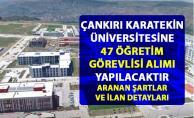 Çankırı Karatekin Üniversitesi öğretim üyesi personel alımı yapacak! 47 akademik personel alım ilanı yayımlandı