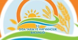 Gıda, Tarım ve Hayvancılık Bakanlığı Geçici İşçi Alımı İlanı