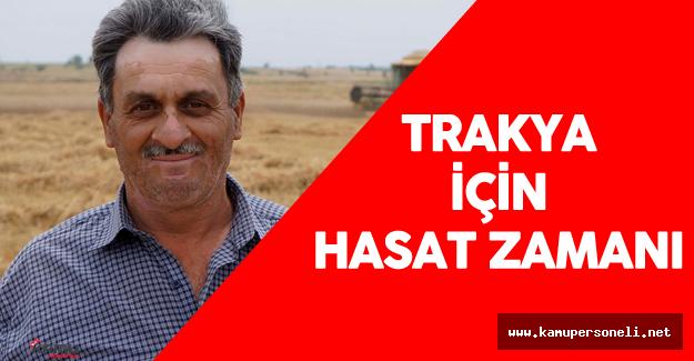 Trakya Bölgesinde Buğday Hasadı Başladı