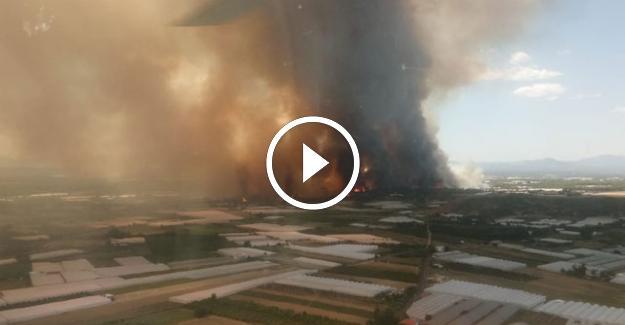 Antalya Aksu'da Orman Yangını Yürekleri Ağza Getirdi!
