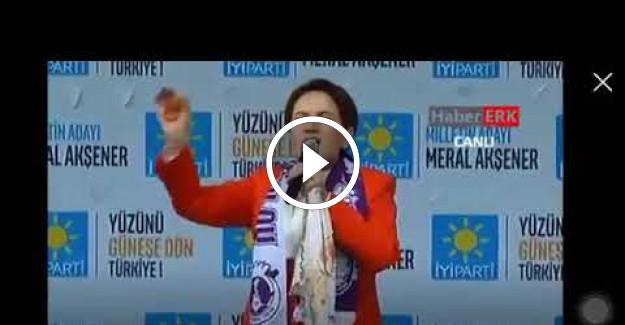 Meral Akşener#039;den Atanamayan Gıda ve Ziraat Mühendislerine Destek